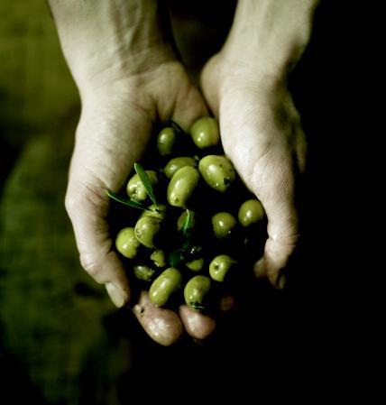 Voedingsproducten, veelal uit Mediterrane streken
