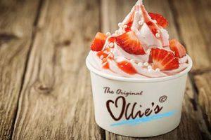 Een samengestelde Ollie's Frozen Yogurt met vers fruit